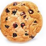 Creazione sezione dedicata all'uso del cookie tecnico all'interno del sito